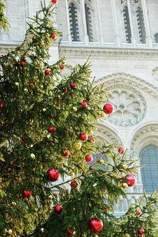 France, Paris, Church, West Rose, Detail, Christmas