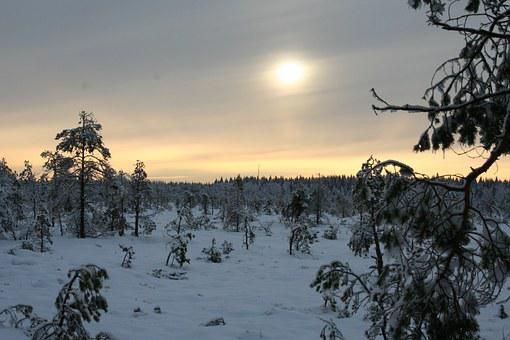 Snow, Winter, Torro, Tammela, Nature