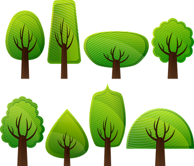 Deciduous Trees, Forest, Trees, Broad-leafed Trees