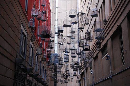 Sydney, Birdcage, Installation, Art, Art Object