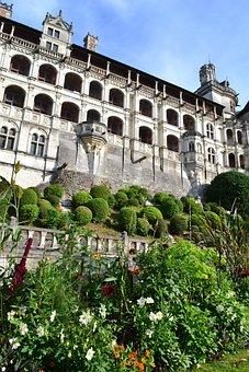 Blois, Château De Blois, Flowerbed, Bushes Carved