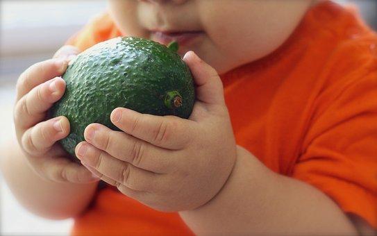 Avocado, Fruit, Baby, Food, Diet, Fresh, Green, Organic