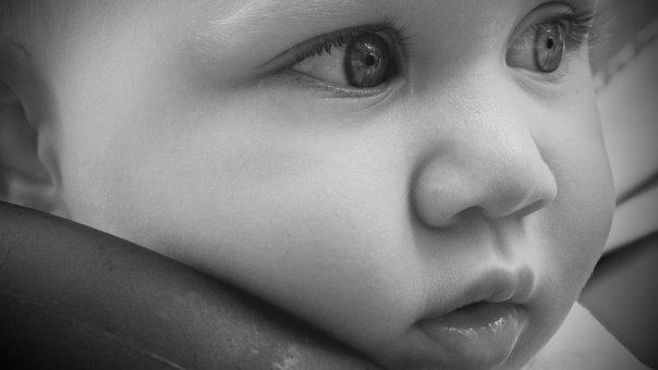 Child, Look, Innocence, Childhood, Bimbo, Delicacy