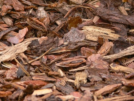 Bark Mulch, Wood, Snippets, Background, Texture