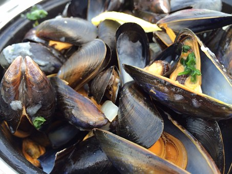 Mussels, Seafood, South, Sea