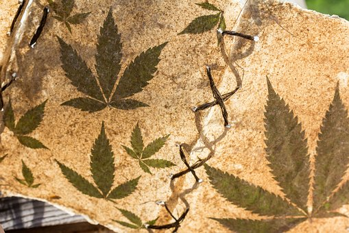 Marijuana, Cannabis, Book