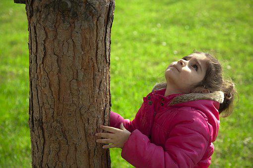 Child, Tree, Nature, Environmental, Grass, Love