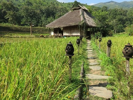Laos, Highlands, Kamu Lodge, Paillotte, Housing