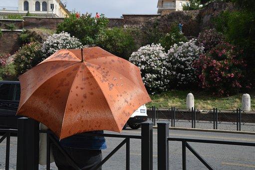 Rain, Umbrella, Italy, Rome, Summer