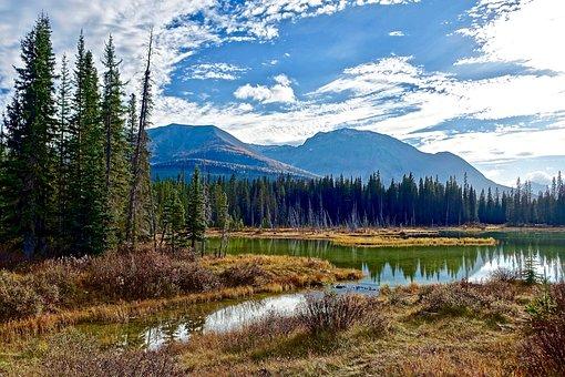 Wilderness, Lake, Serene, Tranquil, Reflection