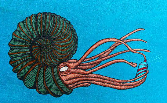 Street, Art, Ammonite, Nautilus, Aerosol, Graffiti