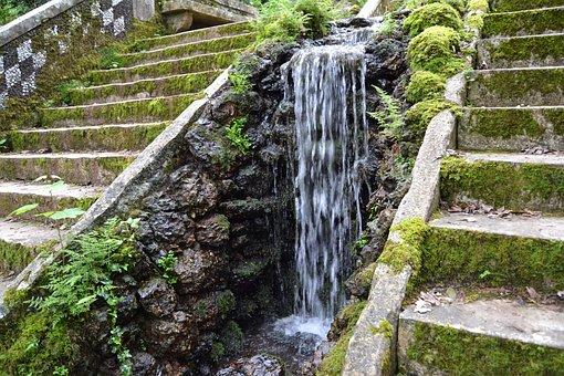 Cascade, Forest, Buçaco