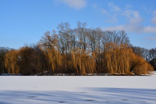 Winter, Nowa Huta, Island, Lagoon