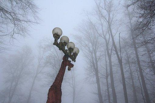 Street Lights, Deer, Fog, Forest, Mountain, Winter