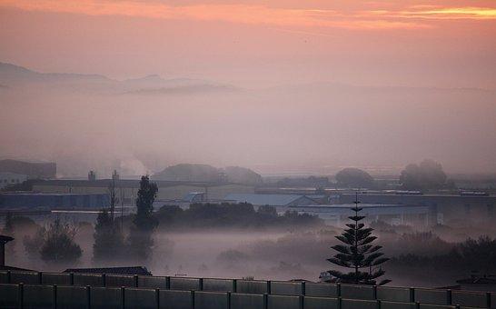 Fog, Dawn, City, Morning, Winter, Nature, Landscape