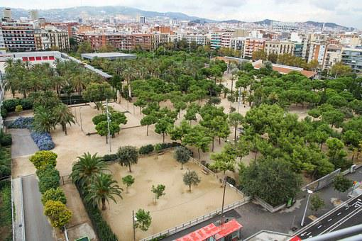 Park, Tree, Street, Barcelona, Spain