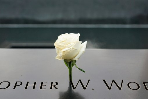 Ground Zero, New York, Usa, Manhattan, America, Rose