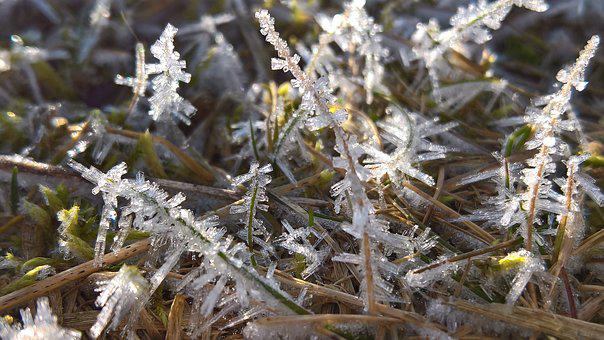 Ice, Snow, Frost, Dew, Winter, Eiskristalle, Hoarfrost