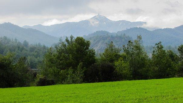 Meadow, Trees, Landscape, Mountain, Mountain Landscape
