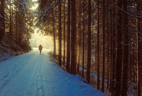 Winter, Snow, Sunrise, Dawn, Walk, Hiking, Figure