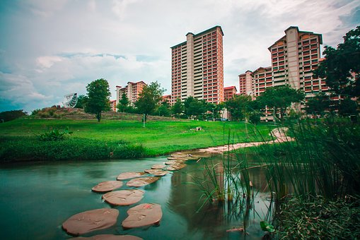 Bishan, Bishanpark, Water, Pond, Singapore, Nature
