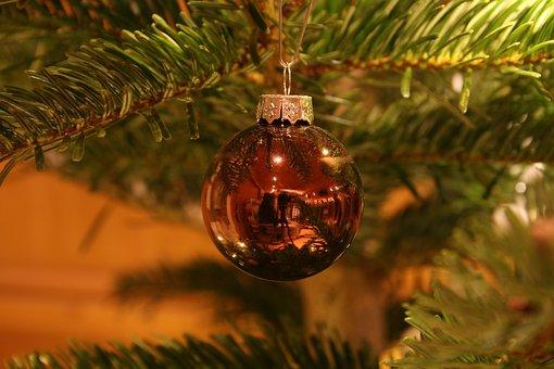 Christmas, Christmas Tree, Green, Background