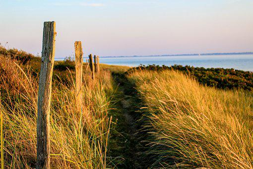 Dunes, Away, Dune Landscape, North Sea, Path, Landscape