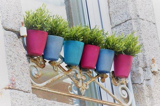 Pots, Pottery, Colors, Window, Terracotta, Plants