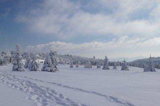 Mountains, Winter, Snow, Nature, Landscape, Sky, Trees