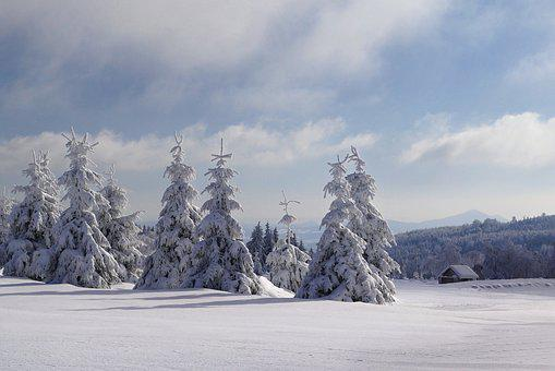Pf 2017, Winter, Snow, Panorama, Frost, Trees