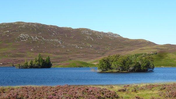 Invernes, Lake, Mountain, Tree Irelands