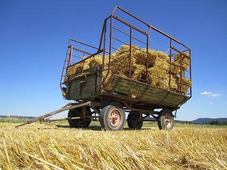 Harvest, Bauer, Fieldwork, Arable, Cereals, Agriculture