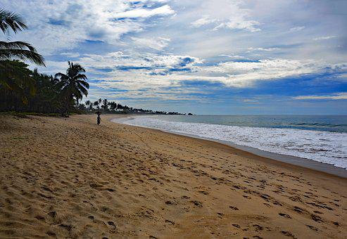 Butre, Ghana, Beach, Water, Holiday, Sand, Palm Trees