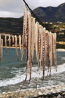 Hanging Octopus, Dying, Seafood, Greece, Traditions