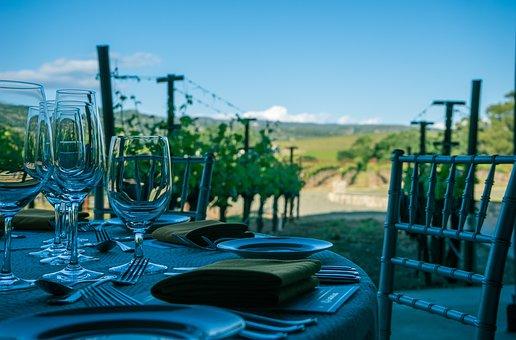 Wine, Napa Valley, Vineyard, Napa, California, Vine