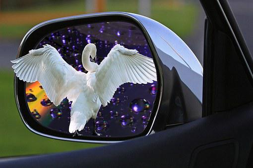 Assembly, Mirror, Car Mirror, Side Mirror, Mirror Image