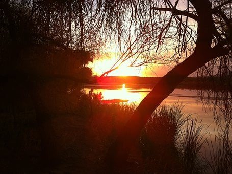 Sunset, Orange, Glows, Glowing, Sunlight, Sunshine