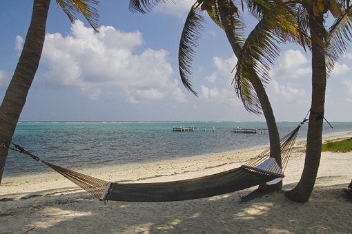 Cayman Island, Hammock, Palm Trees, Caribbean, Water