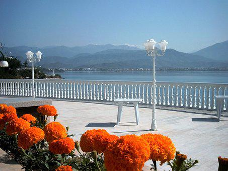 Flowers, Boulevard, Sea View, Turkey
