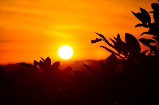 Sunset, Orange, Sky, Glowing, Sun, Star, Silhouettes