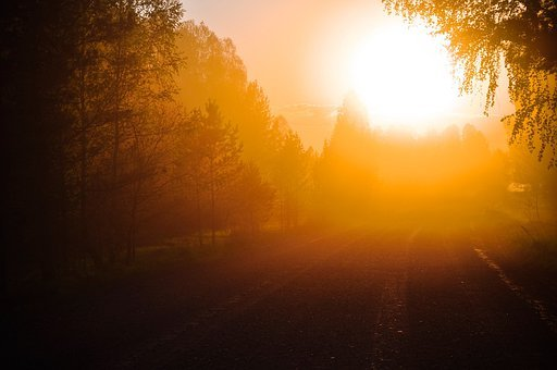 Sunlight, Orange, Dawn, Dusk, Sunshine, Shining, Shiny
