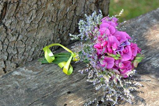 Sweet Pea Scented, Bouquet, Lathyrus Odoratus