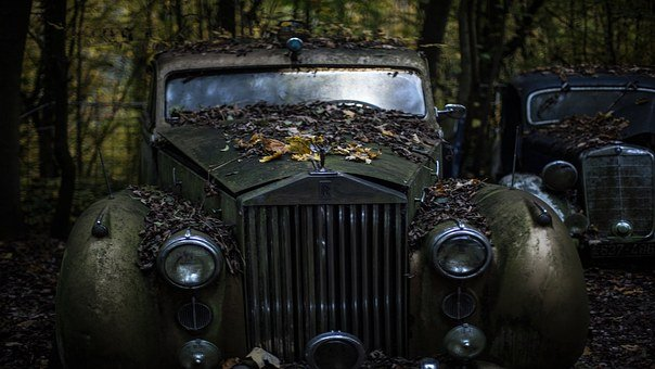 Rolls Royce, Old Car Abandoned, Leaves, Fall, Vehicle