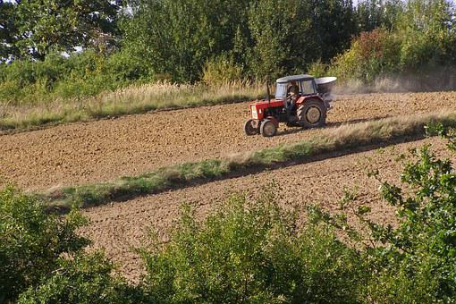 Tractor, Agricultural Machine, Working On The Field