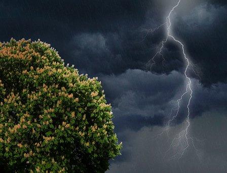 Flash, Thunderstorm, Thunder, Forward, Sky