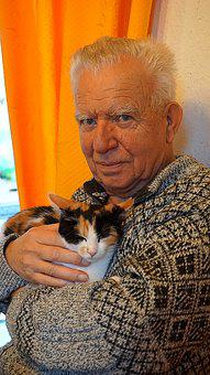 Cat, Grandpa, Man, Harmony, Pet, Human, Retirement