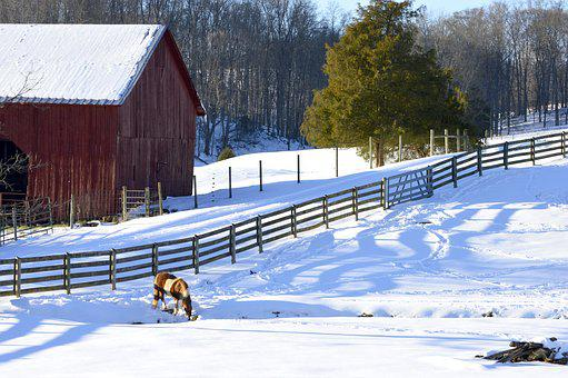 Farm, Barn Wood, Red Barn, Field, Rural, Snow, Horses