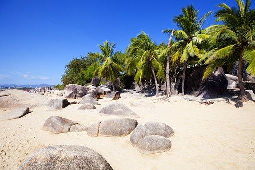 Sanya, Palm Tree, Beach