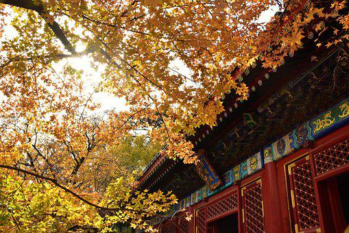 Ancient Architecture, Beijing, Xiangshan, Autumn