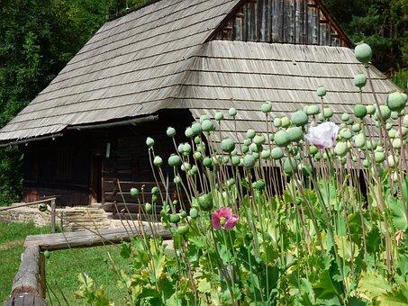 Cottage, Slovakia, Summer, Orava, Wooden House, Old